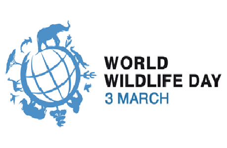 World Wildlife Day Png - 20160124 2016_Wwlday.png, Transparent background PNG HD thumbnail