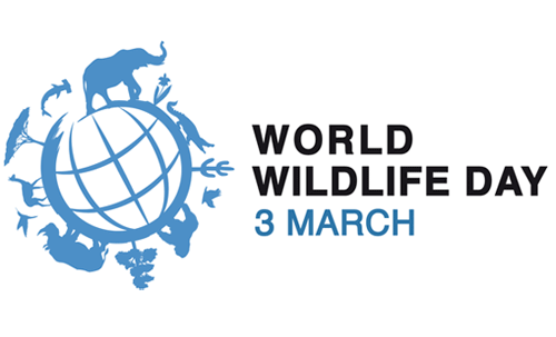 World Wildlife Day Png - March 3Rd Marks The Anniversary Of The Adoption Of The Cites Convention To Protect Endangered Species, And It Is Also World Wildlife Day., Transparent background PNG HD thumbnail