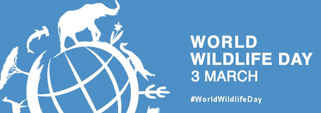 World Wildlife Day Png - World Wildlife Day; Getting Serious About Wildlife Crime, Transparent background PNG HD thumbnail