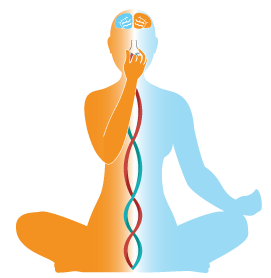 Try Out Different Aspects Of Yoga  Yin, Yang, Breathing And Meditation. Yoga Is Suitable For All Young Or Old, Fit Or Unfit, Stiff Or Flexible. - Yoga Breathing, Transparent background PNG HD thumbnail