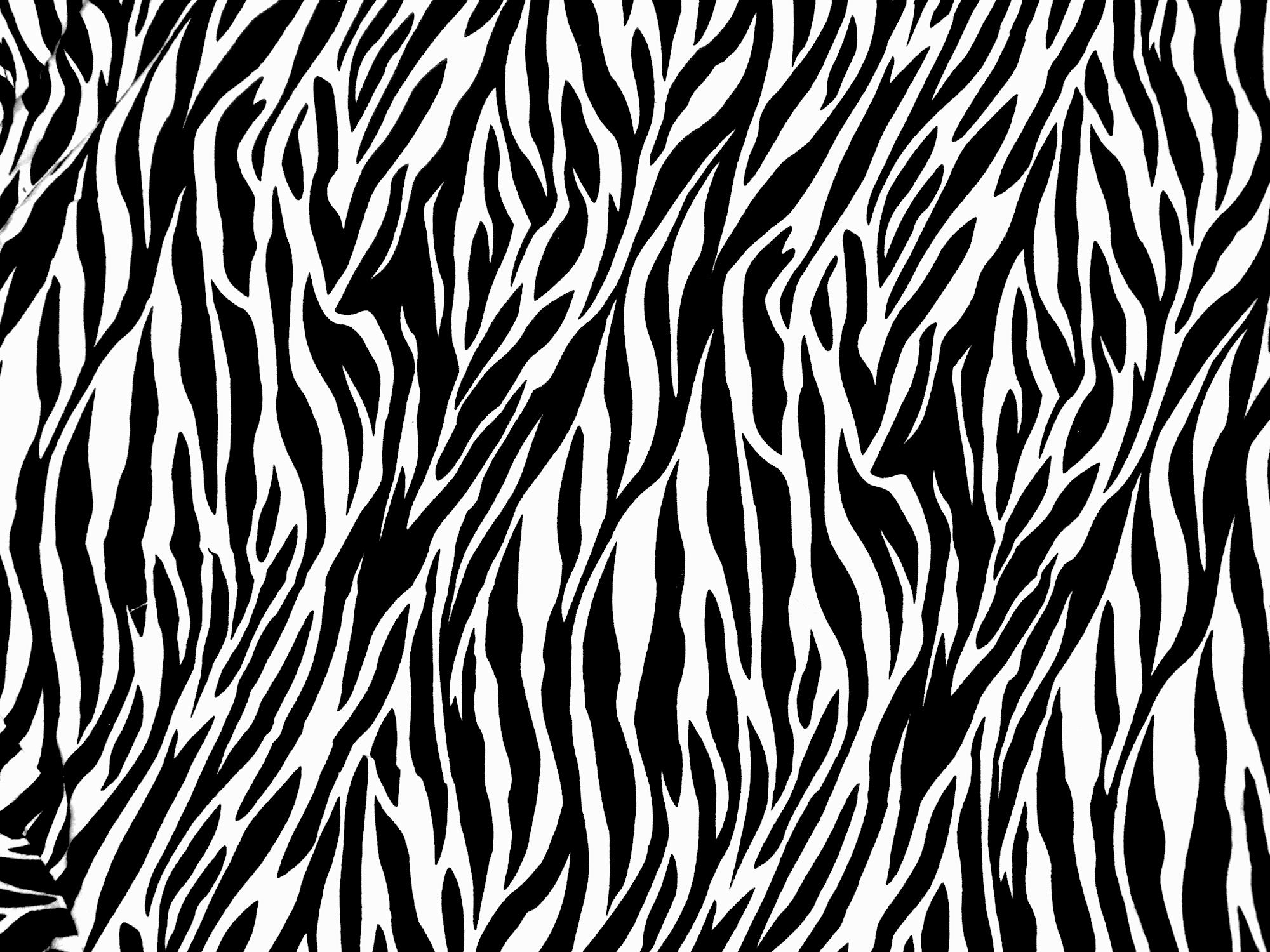 Zebra Print PNG